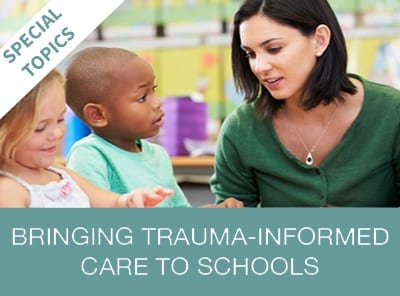 Bringing Trauma Informed Care Online Training